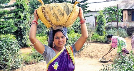 Tribal lady teacher turns wage labourer